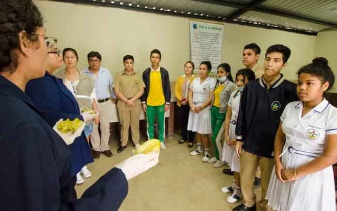 Estudiantes de El Triunfo son capacitados en emprendimientos agro productivos